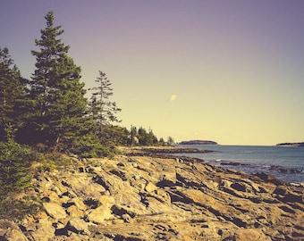 Landscape Art Print - Ocean Photography - Seascape - Nature Photography - Nautical Decor - Blue Wall Art - Tree Photo - Maine - New England