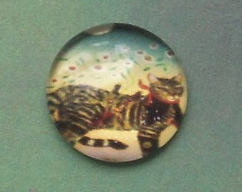 2 ROUND 15 MM GLASS CABOCHON HAS MORE GREY TIGER CAT PATTERN 6