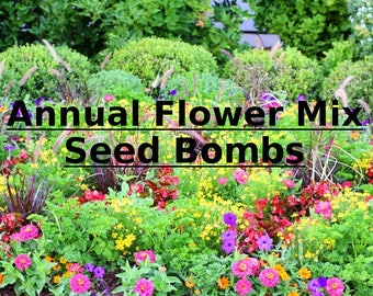 Organic Seed Bomb - 3PK - Annual Seed Bombs - Annual Flower Seed Bombs - Annual Seed Bomb - Save the Bees - Gardening Gift- Seed Bomb Gift