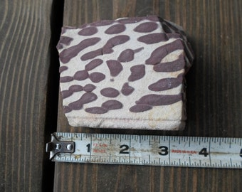 Brown Striped Zebra Jasper From Australia