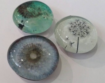 Set of 3 Strong Glass Magnets, Dandelions, Refrigerator Magnets, Kitchen, Office Decor, Nature, Beautiful, Make A Wish, Colorful, Flower