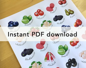 Pdf file of fruit sticker sheet, for home printing. For circular stickers on A4 and US letter.