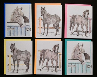 Horse Notecards, pack of 6, 3 different designs