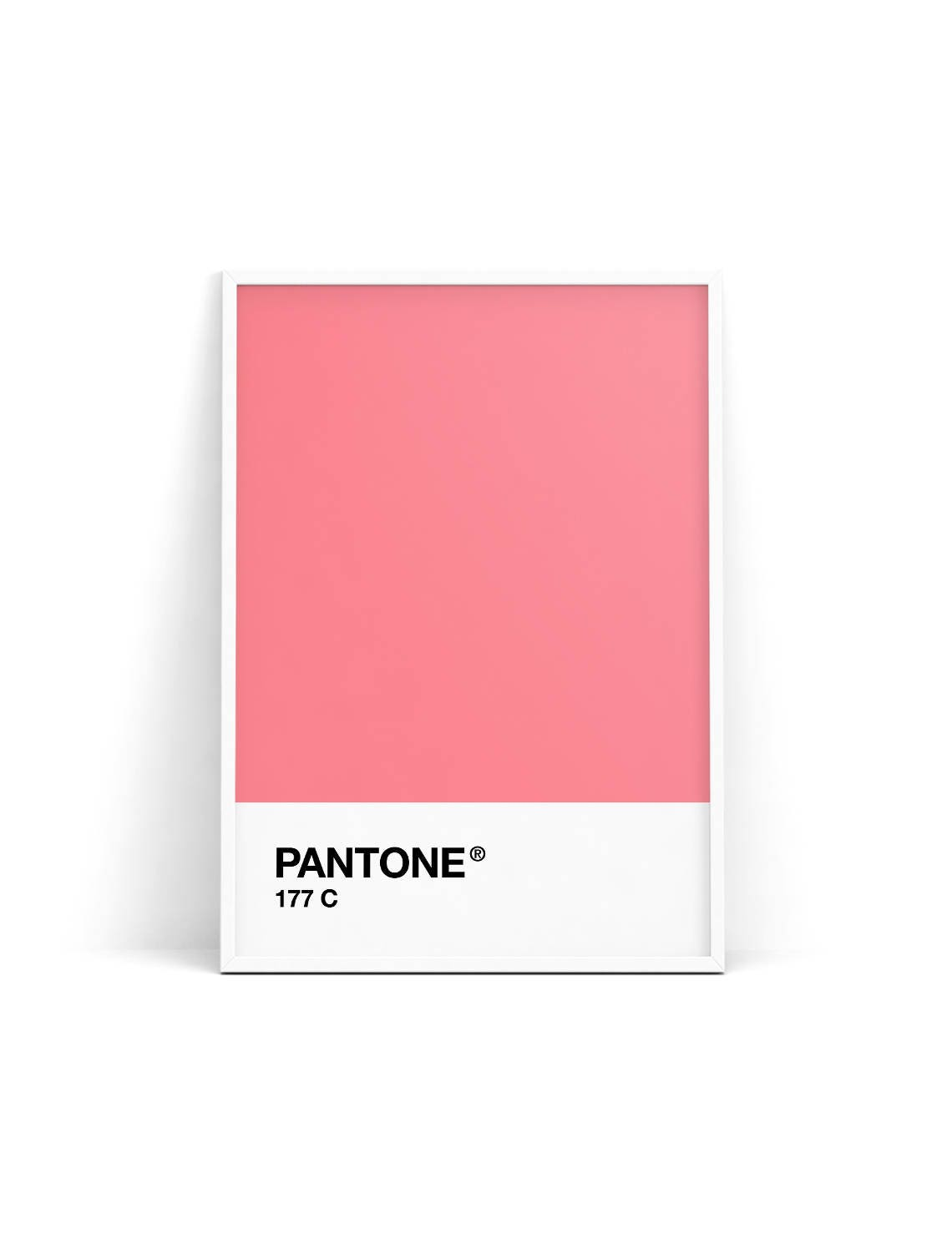 Pantone print Pantone poster Pantone Pink 177C Wall
