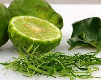 Thai Kaffir Lime Seed, Grow your own, CITRUS HYSTRIX, organic and fragrant source of Lime Leaves for Cooking - 10 Seeds