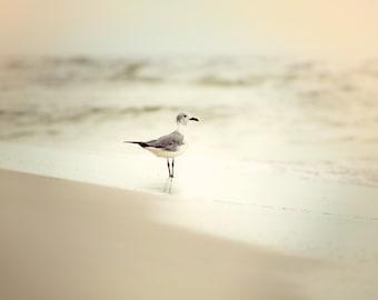 Beach Bird-Ocean-Blue-Tan-Vintage-Dreamy