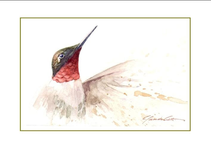 No 40 hummingbird card greeting cards 40 hummingbird card greeting cards m4hsunfo