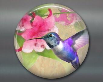 hummingbird gifts for moms - hostess gifts for gardeners - bird decor for kitchen - 3.5 fridge magnet MA-1923