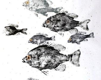 GYOTAKU fish Rubbing Eight Sunfish 8.5 X 11 quality Art Print Bluegill Cottage Decor by artist Barry Singer