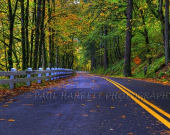 """Autumn  Photography - Columbia Gorge Historic Highway - Fine Art Photography - Photo Art - Fall Colors  16 X 24"""" print -"""