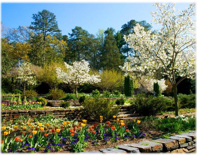 Featured listing image: Springtime at Duke Gardens