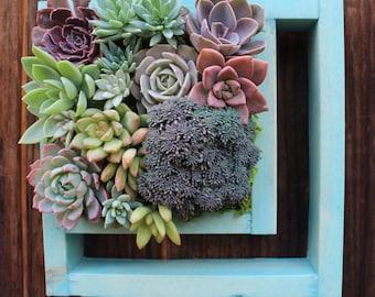 """Vertical cut out planter Succulent garden! 9"""" x 9"""""""