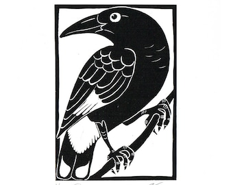 Linocut of an Australian Pied Currawong in Traditional Black, Australian Bird Print, Printmaking, Lino Print