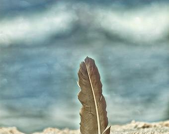 Feather Beach Sand Shoreline Ocean Blue Cream - Fine Art Photograph Print Picture