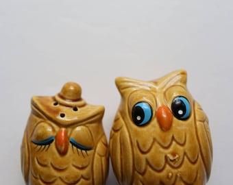 Vintage Ceramic Owl Salt and Pepper Shakers 1960s