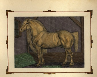 Antique Original Hand colored Engraving of Horse - Old Louis Napoleon