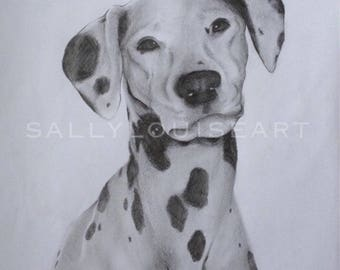 Custom Pet Portraits, Contact me