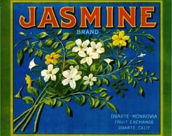 Duarte- Jasmine Orange Citrus Fruit Crate Box Label Art Print