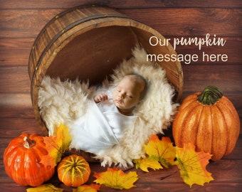 Fall / Pumpkin Newborn Photography / Newborn Photo
