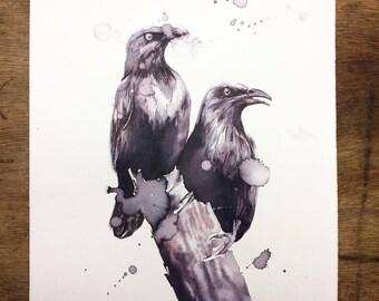 Always listen to the Starlings (original)