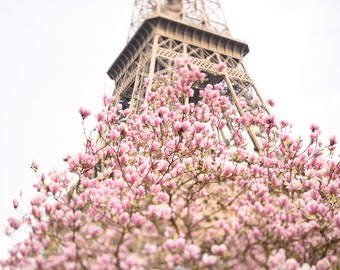 Paris Photography -  Early Magnolias at the Eiffel Tower, Spring in Paris, Travel Fine Art Photograph, Large Wall Art, Gallery Wall