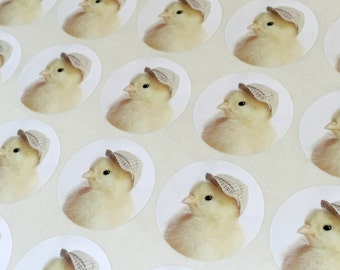"Chicks in Hats Stickers Baby Chick in A Tiny Plaid Hat Chicken Sticker Seals 1.5"" Round (12)"