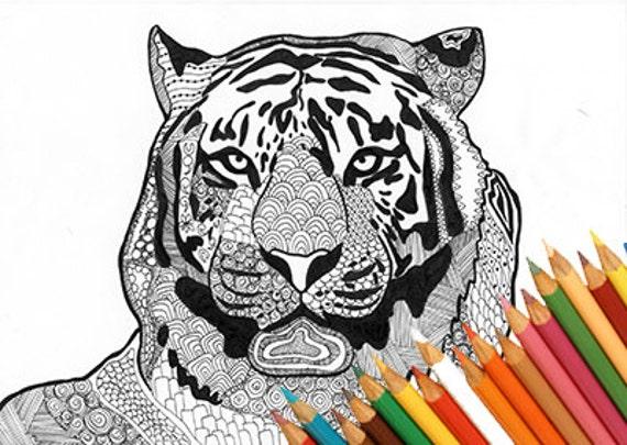 Tiger coloring page coloring tiger tiger animal zentangle for Immagini tigre da colorare