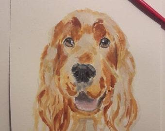 Pet animal illustration