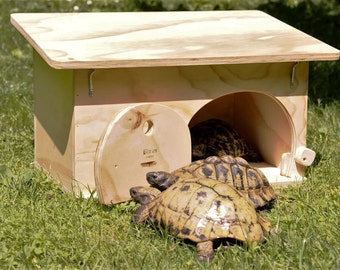 House For Tortoises with the wooden basis