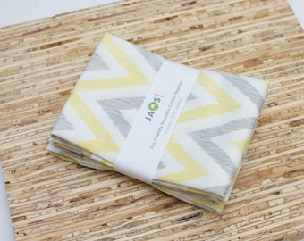 Eco-Friendly Large ORGANIC Cloth Napkins - Set of 4 - (N2219)