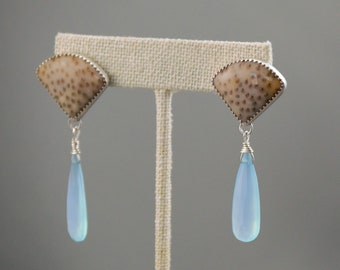 Petrified palm and faceted aqua chalcedony silver post earrings.