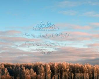 Winter Sunlight Dreamy Forest Sky Landscape Photography  Nature Digital Print Wall Art Home Decor Instant Download