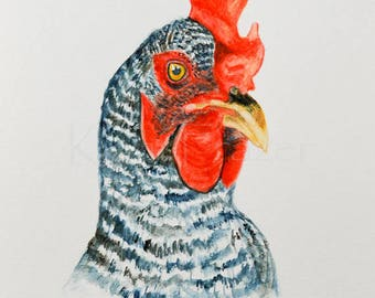 Chicken original watercolor painting, barred rock chicken, kitchen art