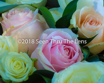 Basket of Roses - Photographic Print