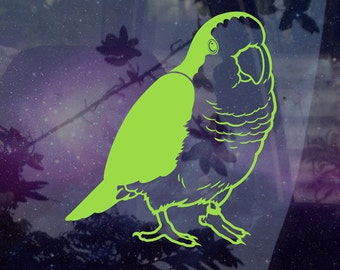 Quaker Parrot Decal