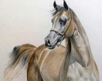 Custom Horse Art Pet Portrait, 11 x 14 Colored Pencil Art, cat dog horse memorial, best etsy shop, top etsy seller