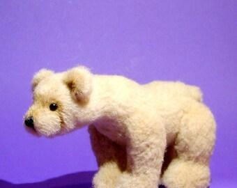Bear Cody
