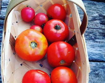 Brandywine Tomato Seeds, Heirloom Tomato Garden, Open Pollinated Vegetable Seeds, Great for Farmers Market Tomatoes