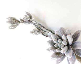 Gray Aeonium, blooming aeonium, faux succulent, fake succulent, fake plant, artificial succulent, gray succulent, lavender succulent