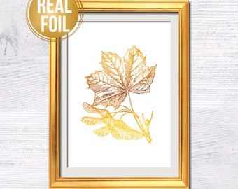 Maple leaf poster Maple leaf print Maple leaf real foil Maple leaf illustration Educational room decor Wall hanging Botanical art decor G352