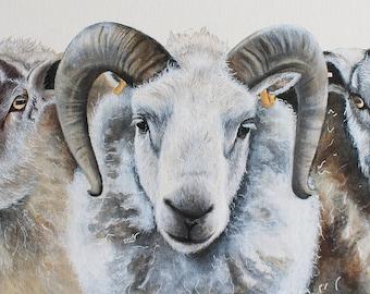 Sheep Painting, Sheep Print, Sheep Portrait