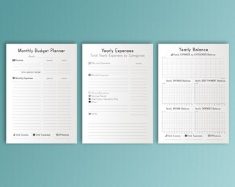 Monthly Budget A4 Budget Planner, Finance Organizer, Saving Tracker, Daily Expense, Daily Budget Planner Budget, Financial Binder Printable