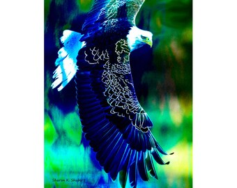 Eagle Art, Native American Totem Animal, Bird of Prey, Southwestern Home Decor, Blue Green, Photomontage Wall Hanging, 11 x 14, Giclee Print