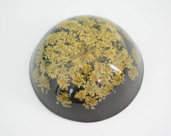 Vintage Acrylic Queen Anne Lace Dried Herb Paperweight Probably Made in Canada by Tarax Infinity - Flowers, Weeds, Plants