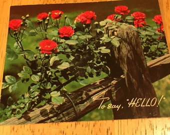Hello Card - 1950's