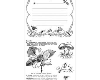 Graphic 45 Nature's Sketchbook Stamps 3, SC007691