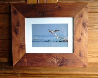 """The Guardian: 6x9"""" osprey print framed in reclaimed wood"""