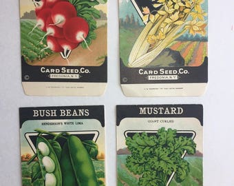 Lot of 4 Antique vintage 1920s Card Seed Co. seed packets Fredonia, NY Radish, Mustard, Bush Beans, Celery