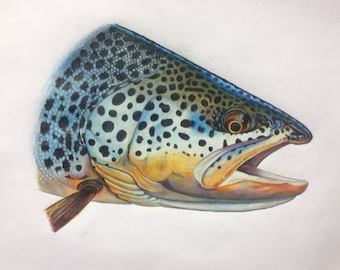 """SMALL 8.5x11"""" Brown Trout Print. Limited edition print"""