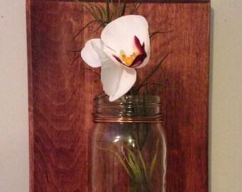 Wall Mounted Mason Jar Vase